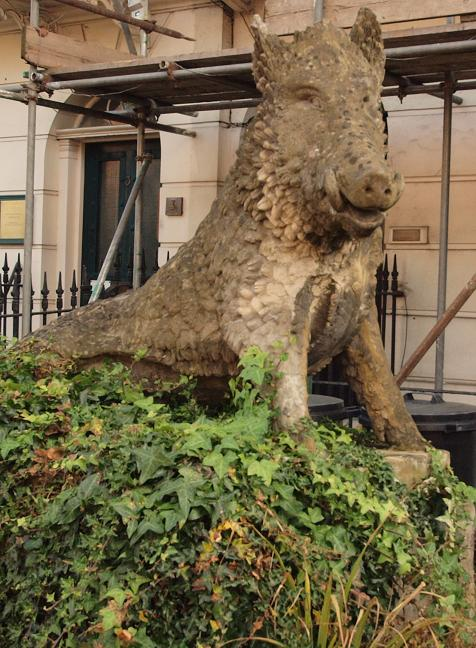 Chiswick High Road wild boar. © Mike Quinton